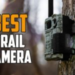 Featured cameras for wildlife shooting